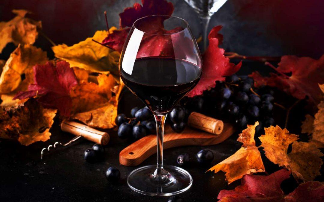 October Newsletter: Harvest Time!